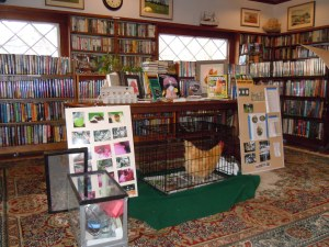 Sue's display of chicken books and photos of her flock.